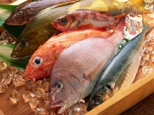 seafood_1001.jpg