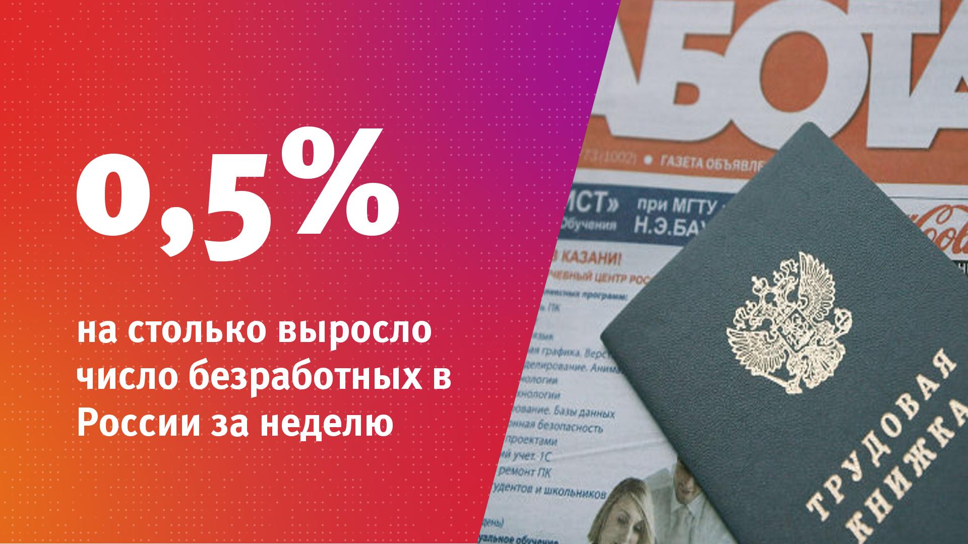 Минтруд проинформировал оросте числа официальных нигде неработающих занеделю на0,5%