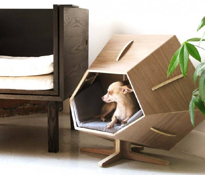 Stunning Pet Home Design Pictures - Interior Design Ideas ...