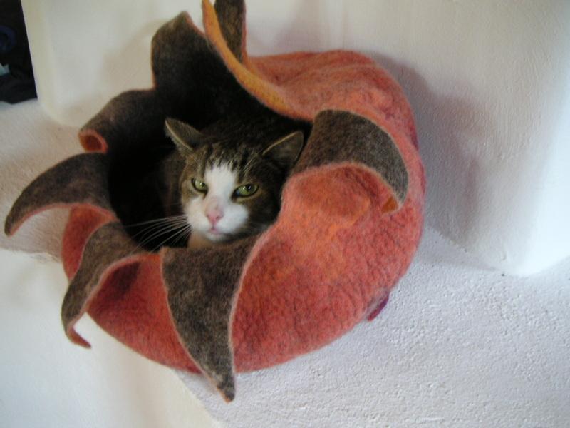 Домик для кошек из шерсти мастер класс