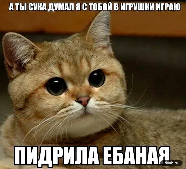 devushka-ruka-v-pope-video